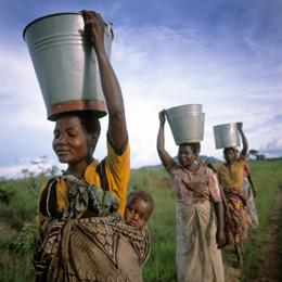 news.2010.conservationpovertyjpg (1)