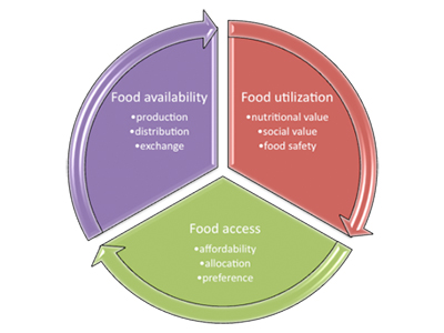 Figure 1: The three components and nine main activities of food systems, according to the research group GECAFS.