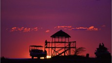 800px-Africa_safari_sunset