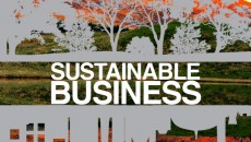 Sustainable_business_bookcover (1) copy
