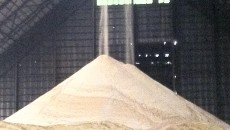 Raw_Sugar_Production_in_the_Philippines