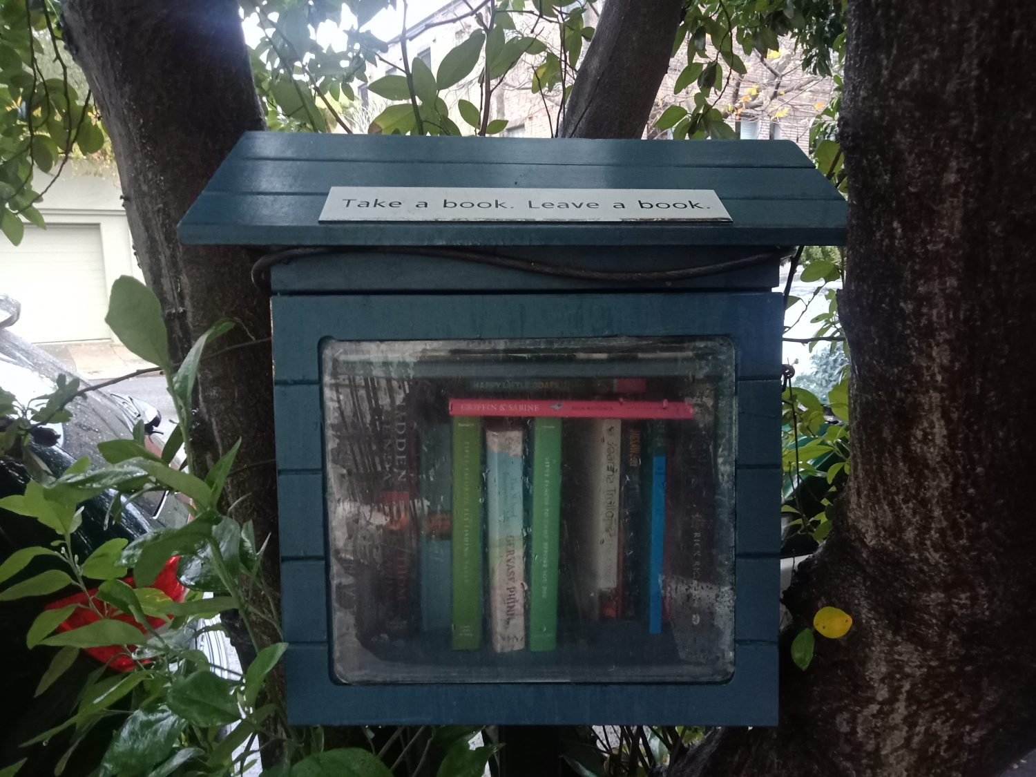 The Rapid Growth Of Little Free Libraries Sense Sustainability